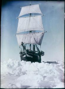 El Endurance sobre el hielo del mar de Weddell  Fotografía: NSW State Library DN-a090012